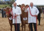 Devon County Show May 2016