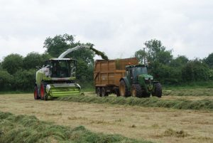 Grass Silage at Killerton