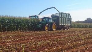 Harvest at Columbjohn Farm