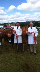 Patrick Greed with Killerton Iloveit Honiton Show 2015